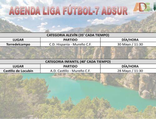Liga Comarcal de Fútbol-7 ADSUR