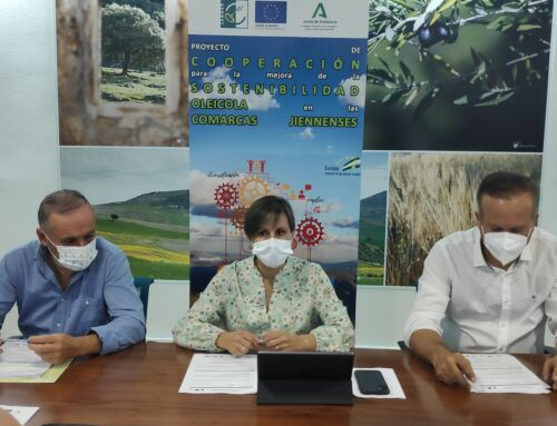 """Presentación oficial del proyecto de cooperación para la """"mejora de la sostenibilidad oleícola en las comarcas Jiennenses"""""""